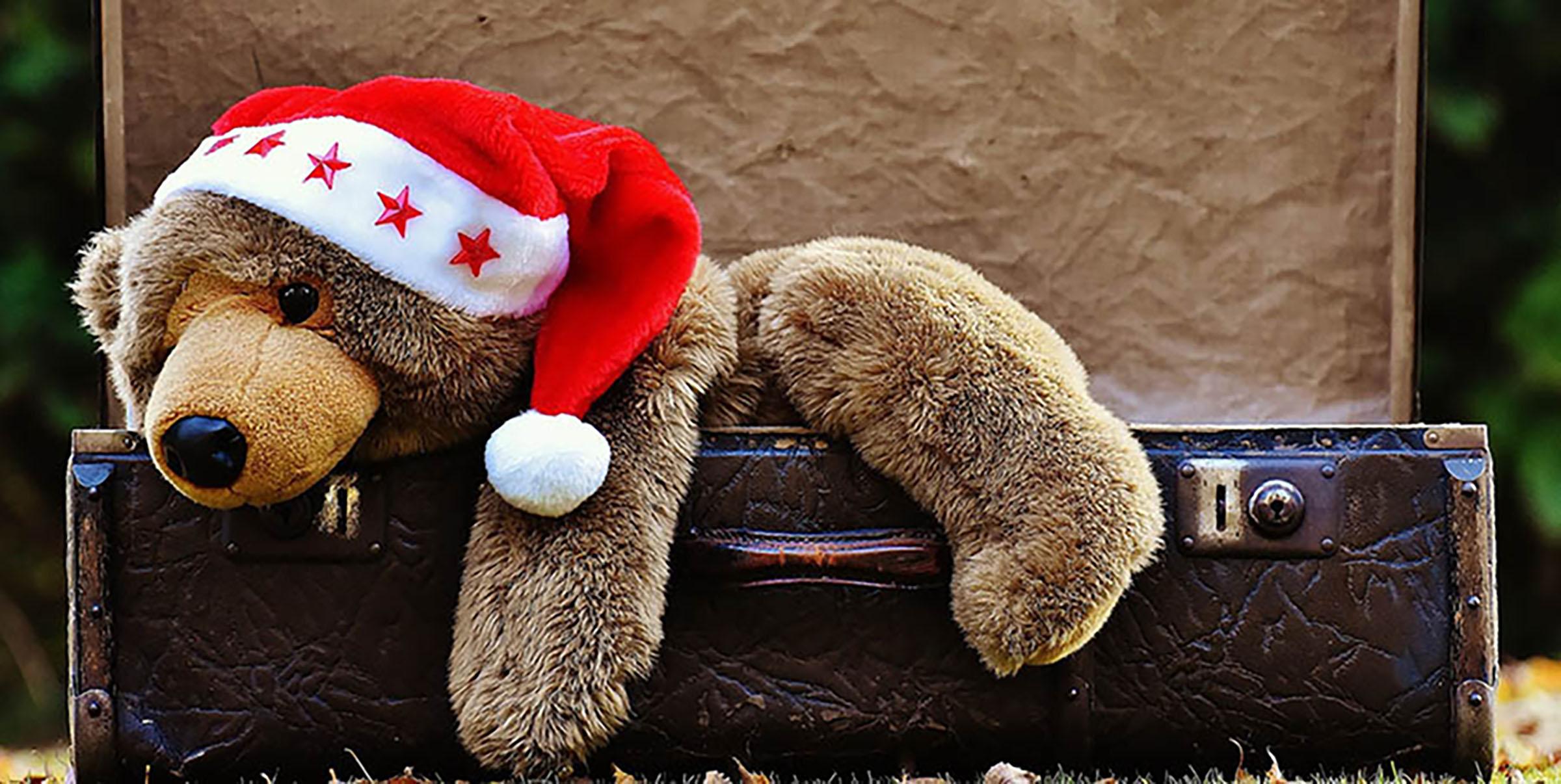 generous christmas large